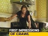 Video : First Impressions Of Horror-Thriller Film <i>Crawl</i>