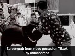 Bakrid 2019: बकरे का बदला... लड़के ने पीटा तो खड़े होकर किया Attack, देखें VIDEO