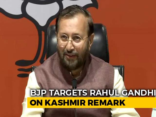 "Video : ""You Were Wrong About Kashmir, Rahul Gandhi"": BJP"