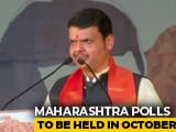 Video : Devendra Fadnavis Begins 4,400 Km Maharashtra Tour Ahead Of State Polls