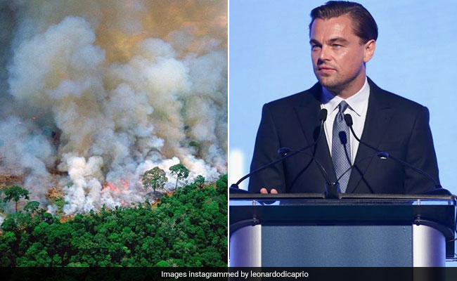 Leonardo DiCaprio Falls For Old Pic Going Viral As Amazon Rainforest Fire