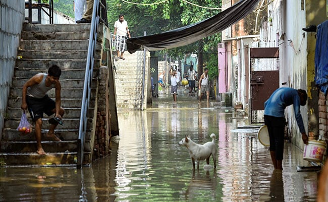 Pregnant Woman, Family Spend Night On Tree As Yamuna Overflows In Delhi