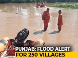 Video: Flood In Sutlej Keeps Punjab On Edge