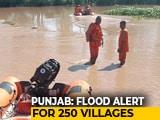 Video : Flood In Sutlej Keeps Punjab On Edge