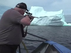 Iceberg Hunters On The Trail For 'The World's Purest Water'