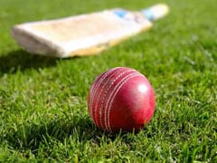 Earley Cricket Club Introduces Vegan Ball To Replace Traditional Leather Ones