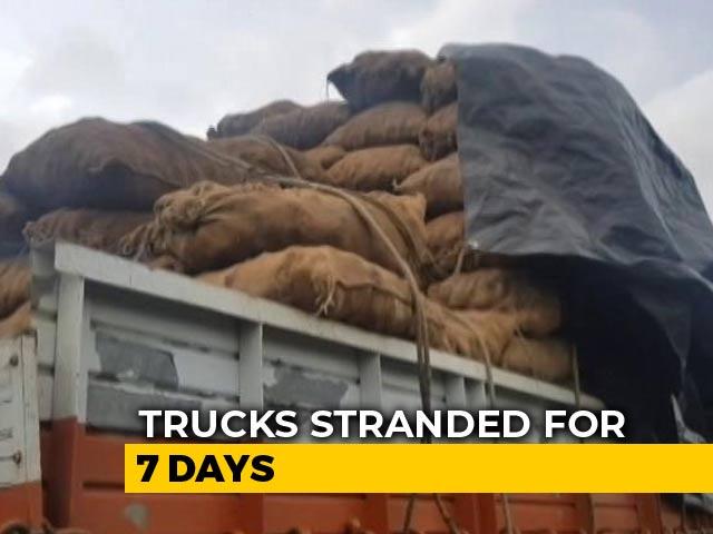 Video : Potatoes Rot In Trucks Stranded At Maharashtra's Flooded Kolhapur