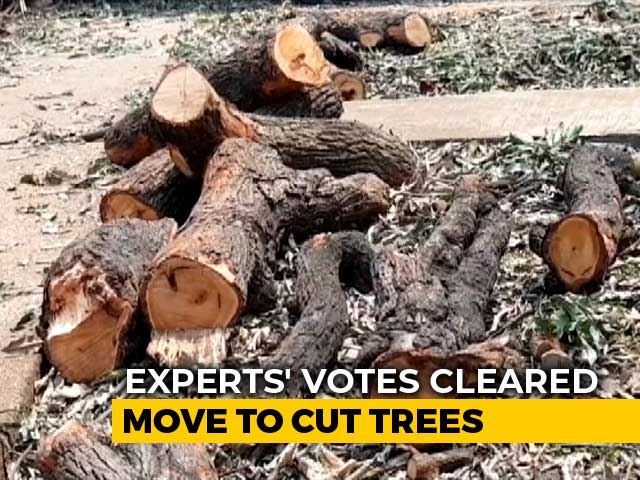 Video : Tree Authority Allows Cutting Of 2700 Trees For Mumbai Metro Car Shed
