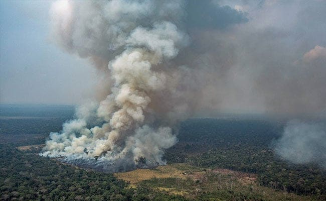 Brazil bans burning for 2 months to defuse Amazon crisis