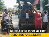 Video : No Rainfall, But Floods Keeps Punjab On Edge
