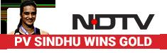 PV Sindhu Wins World Championships Gold