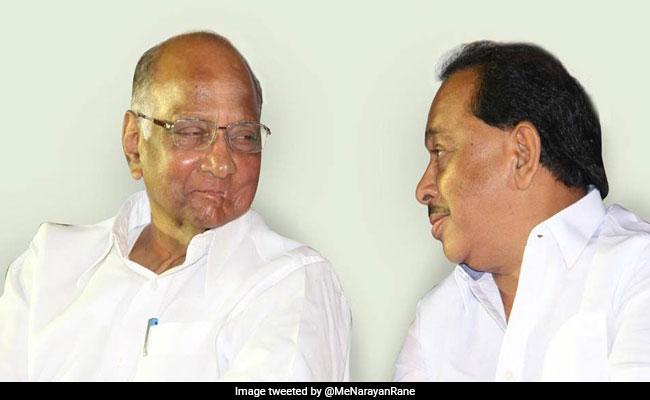 पता नहीं राणे का कांग्रेस में शामिल होने का फैसला गलत था या बड़ी भूल: पवार