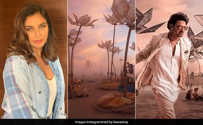 'Blatant Theft, Not Inspiration': Lisa Ray Calls Out Prabhas' Saaho Makers For Plagiarism