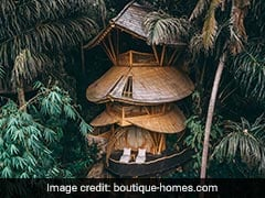 Spectacular Bamboo Treehouse That Sits In A Jungle Is Available To Rent