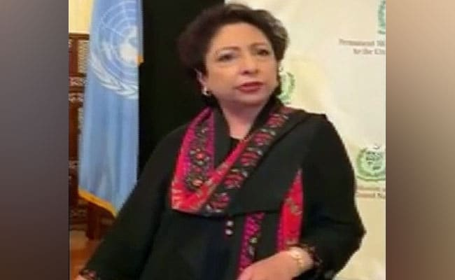 'You Don't Deserve To Represent Us'': Pak Envoy To UN Heckled At Event