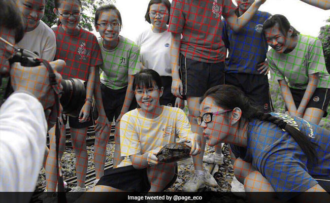 Black And White Or Coloured? Viral Optical Illusion Confuses The Internet