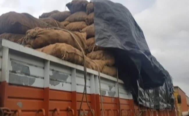 महाराष्ट्र: बाढ़ के कारण फंसे ट्रकों में लदा सैकड़ों टन आलू हुआ खराब
