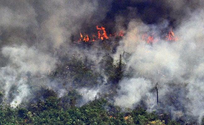 Donald Trump, Boris Johnson Offer Help As Fires Scorching Amazon Grow