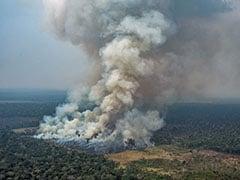 Firefighting In Amazon Battles Environment, Politics