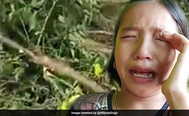 Girl, 9, Seen Crying Over Felled Trees Made Manipur's 'Green Ambassador'
