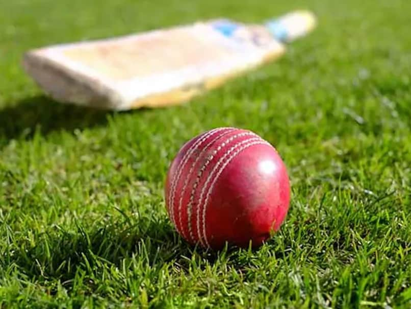 Earley Cricket Club Introduced A Vegan Cricket Ball Covered In Rubber