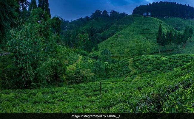 World Tourism Day: Northeast India की 5 सबसे खूबसूरत जगहें, अगली बार जरूर घूमने जाएं यहां
