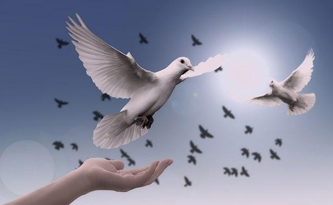 International Peace Day पर इन खास मैसेज को भेजकर दें विश्व शांति दिवस की बधाई