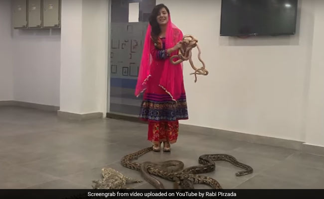 Pak Singer Threatens PM Modi With Reptiles, Crocodiles; Fined