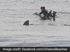 Photo Captures Surfer's Shockingly Close Encounter With Great White Shark