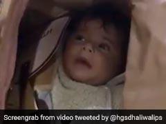 बच्चे को बैग में पैक कर ले जाया गया दुबई, Video देख भड़कीं स्वरा भास्कर, Tweet कर कही ये बात