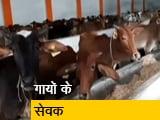 Video : मध्य प्रदेश के खंडवा में हिंदू-मुस्लिम मिलकर बना रहे हैं गायों का अस्पताल