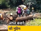 Video : मुंबई में आरे के जंगल बचाने के लिए बियर ग्रिल्स से लगाई गुहार