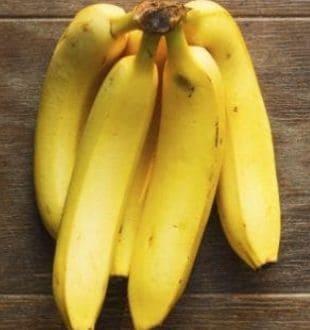 Diabetes Diet: डायबिटीज रोगियों के लिए ये 5 फल हो सकते हैं खतरनाक! बढ़ा सकते हैं ब्लड शुगर लेवल