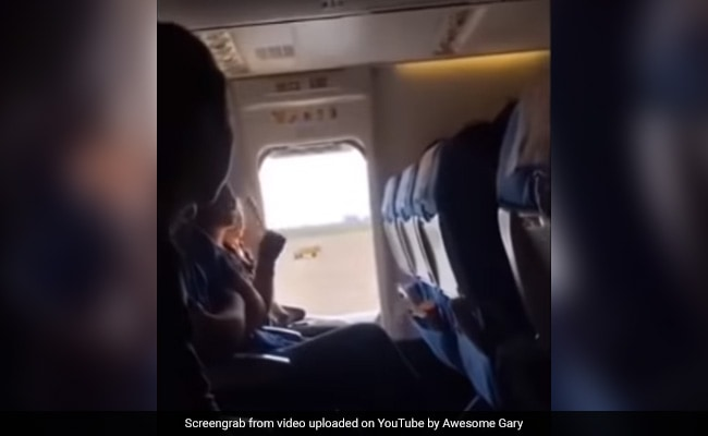 Chinese Woman Opens Plane's Emergency Exit For 'Fresh Air', Delays Flight