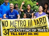 Video: No Trees To Be Cut In Mumbai's Aarey Colony Till September 30, Court Says Amid Protests
