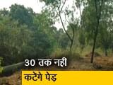 Video : मुंबई की आरे कॉलोनी में 30 तारीख तक नहीं काटे जाएंगे पेड़
