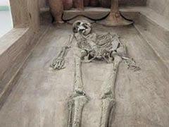 क्या आर्यों ने हमला किया था, कौन हैं यहां के पूर्वज? ऐसे ही 5 सवालों पर प्रोफेसर वसंत शिंदे के दावे