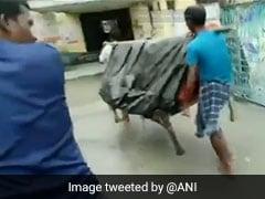 Assam: হাসপাতালে যাওয়ার পথেই সন্তানপ্রসব! ক্ষোভ, কবে মিলবে পরিষেবা?