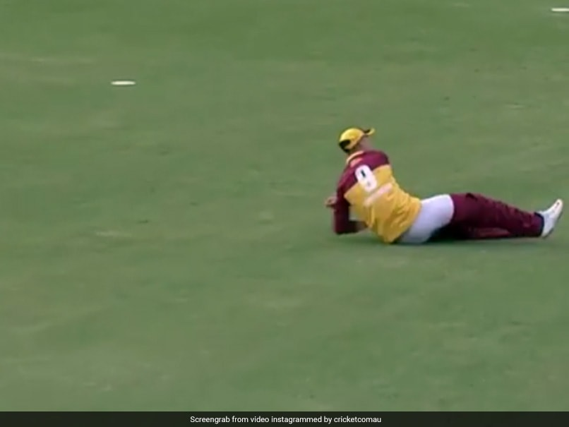 Marnus Labuschagne Loses His Pants But Pulls Off An Incredible Run-Out. Watch