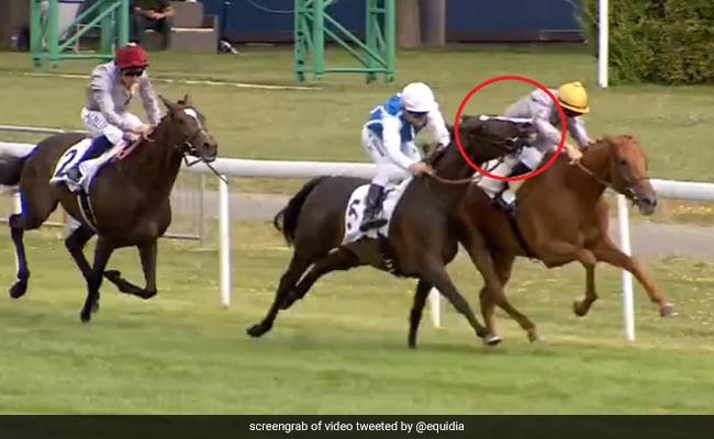 रेस जीतने के लिए घोड़े ने किया जॉकी पर हमला, दांत से खींचा हाथ और... देखें VIDEO