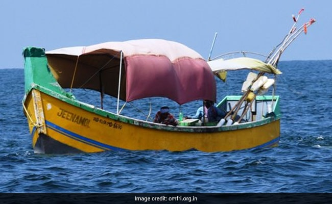 Sea Turns Dark Green After Algae Found In Rameshwaram Island Town