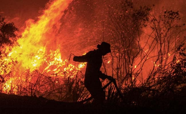 Indonesia Rainforest Fires Surge, Concerns Rise About Global Warming