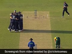 Tasmania Lose Six Wickets For 12 Runs In Marsh Cup. Watch