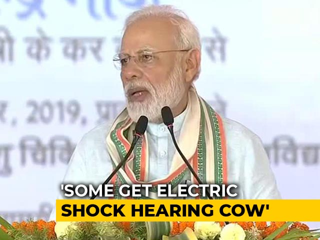 """Video : """"Word 'Cow' Shocks Many, It's Unfortunate,"""" Says PM"""