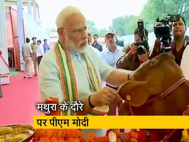 Videos : आज मथुरा में पशु आरोग्य मेले का उद्घाटन करेंगे प्रधानमंत्री नरेंद्र मोदी