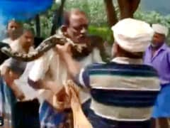 Python Coils Itself Around Kerala Man's Neck In Horrifying Video