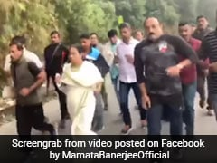 Watch: Mamata Banerjee Jogs 10 km With Entourage In Hills Of Darjeeling