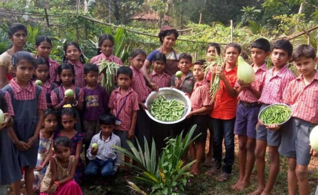 Set Up Nutrition Kitchen Gardens: MHRD To Schools