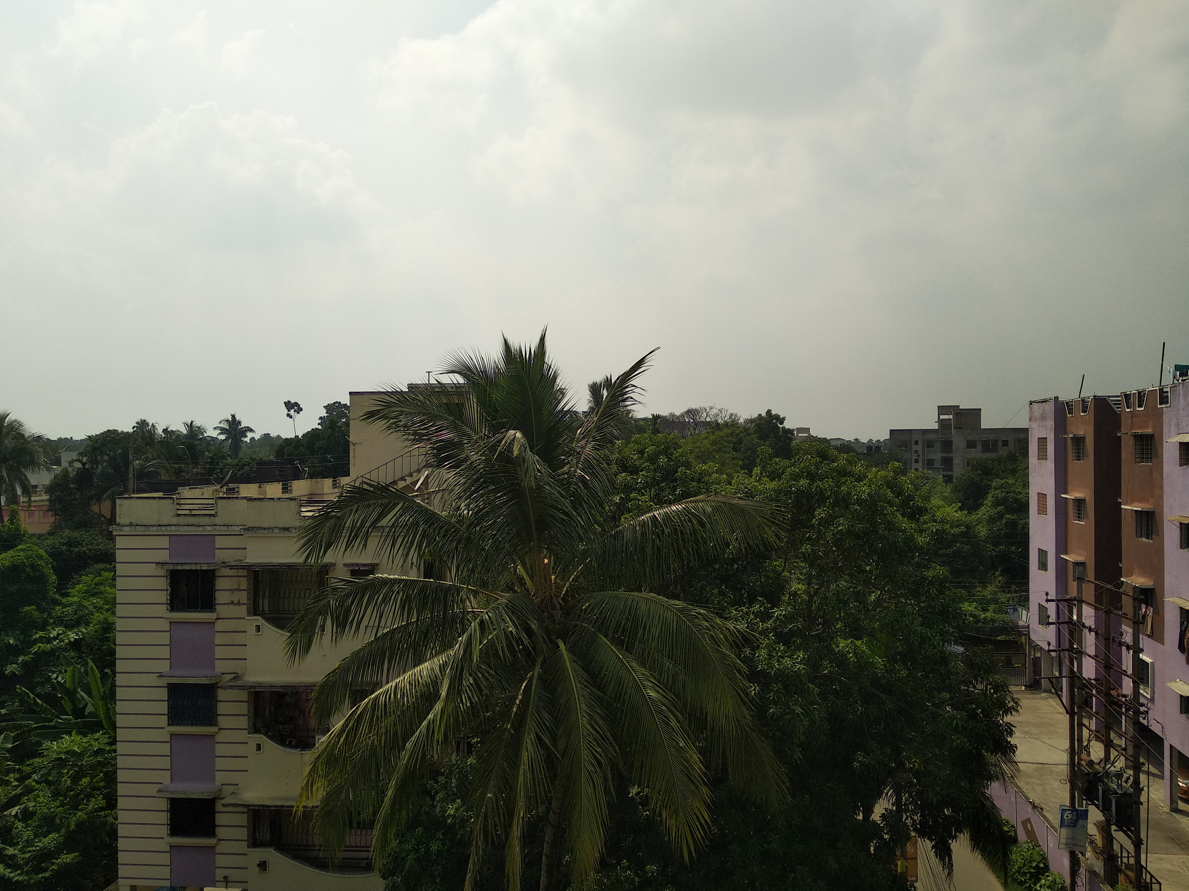 Kolkata Weather Update : বজ্রবিদ্যুৎ সহ বৃষ্টির সম্ভাবনা কলকাতায় ও জেলায়