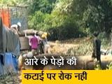 Video : आरे को जंगल घोषित करने से बॉम्बे हाइकोर्ट ने  किया इनकार